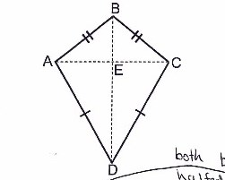 <p>Measurement and geometry: Equal areas</p>